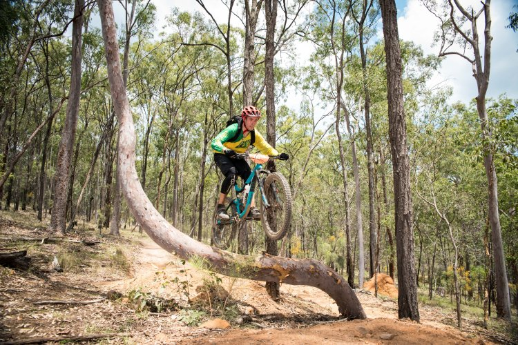 Photos from the Dingo Weekend 2017 hosted at Hidden Vale Adventure Park