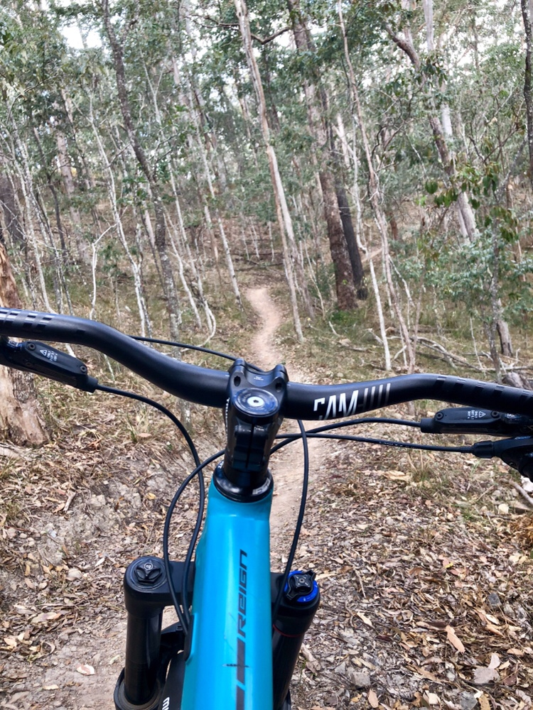 MTB Motivation: Staying focused on the trail ahead  – Brakes Wide Open